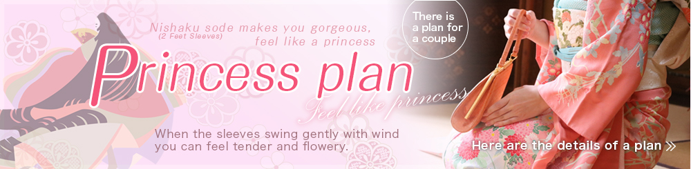 Princess plan